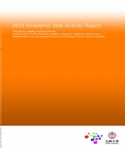 CV _2013_ActivityReport